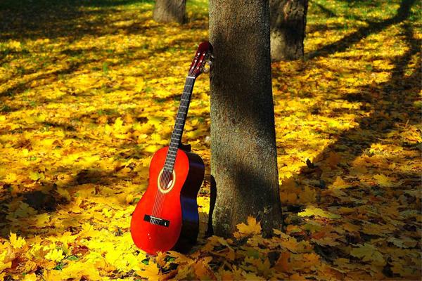 برنامه آموزشگاه موسیقی منظومه