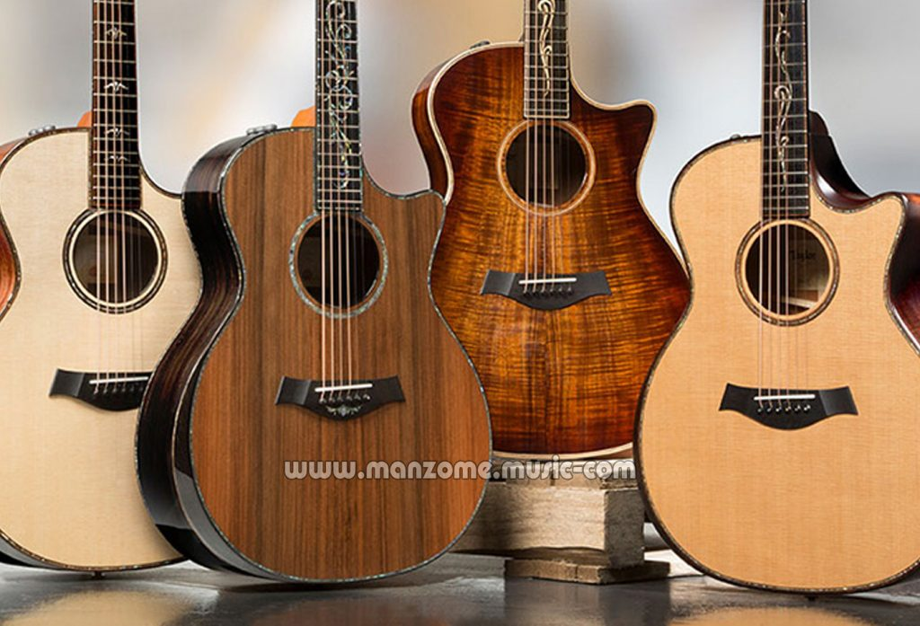 آموزش انواع گیتار